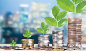 đầu tư và đầu cơ